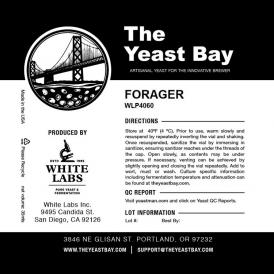 FORAGER Yeast