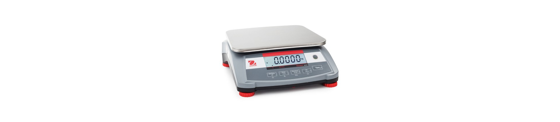 Professional scales